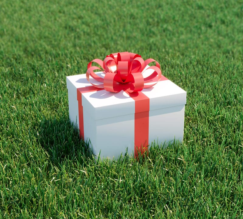 Give the perfect gift of a healthy and beautiful lawn with a lawn care program from LawnLab here in Sachse, TX.