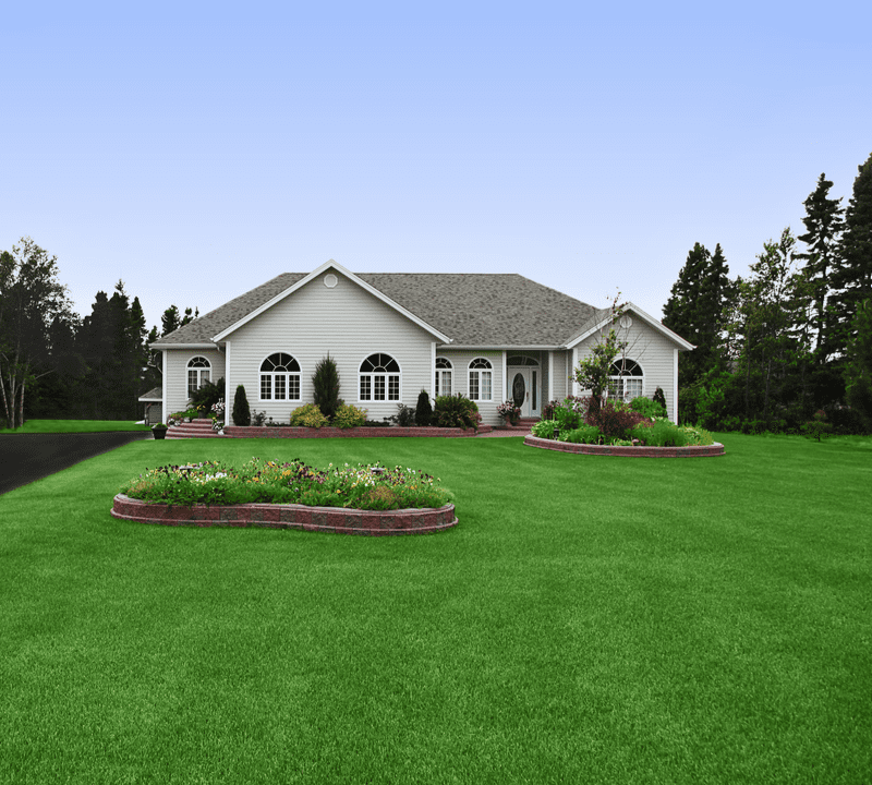 home with landscaping and yard
